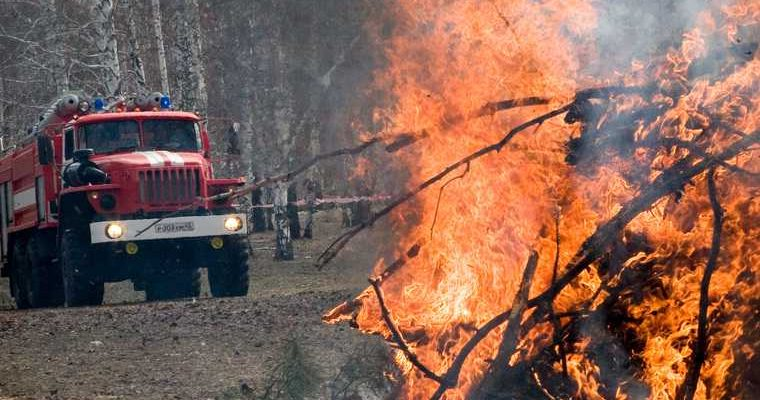 новые лесные пожары в ЯНАО 2020