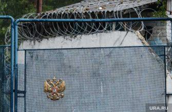 Третьяков бывший глава Чайковского вышел на свободу