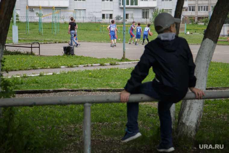 Украина киев донбасс война лнр днр зеленский 2024 год железный занавес