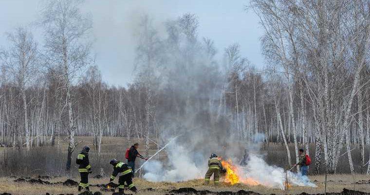 Тюмень лесные пожары дым